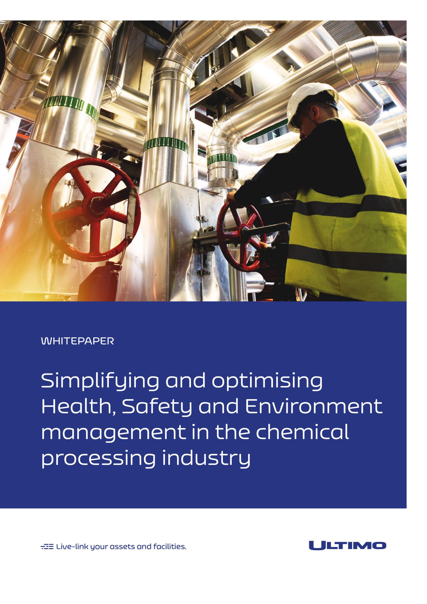 Integration of HSE and maintenance management is the key to improved performance in chemical processing sector